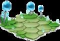 Thunder-Habitat- 1