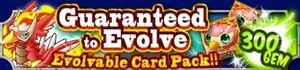 Evolvable Card Pack