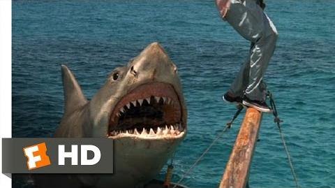 Jaws The Revenge (7 8) Movie CLIP - The Beast Comes Back (1987) HD