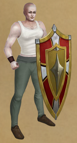 Knight-General's Aegis