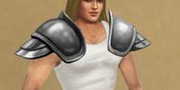 Steel Sentinel's Shoulders