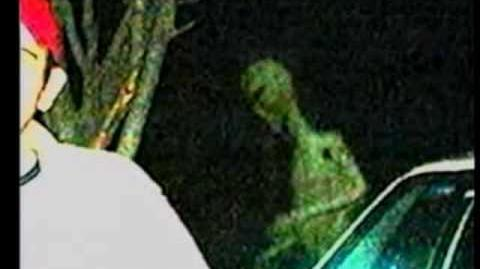 Real Aliens Caught On Film?