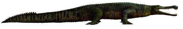 File:Sarchosuchus.jpg