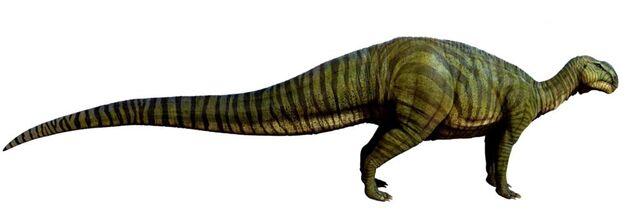 File:1024px-Tenontosaurus.jpg