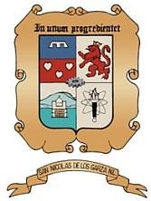 Archivo:Escudo San Nicolas.jpg