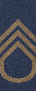 SWA Master Sergeant