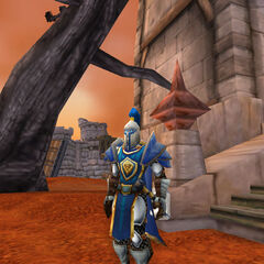 Wearing his Knightly armor just before talk with the Horde Rebels in Durotar.