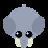 Elephant Possible Desi