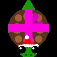 Winterturtle1