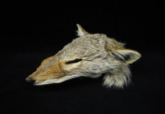 File:Coyote face mask-0.jpg