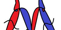 Morphopedia Wiki