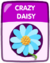 Crazy Daisy old