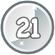 Level 21 icon