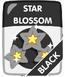Black Star Blossom