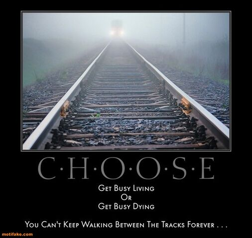 File:Choose-busy-living-dying-forever-tracks-demotivational-posters-1328126121.jpg