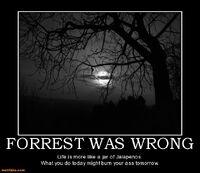 http://www.motifake.com/forrest-was-wro-forrest-gump-life-like-jalapenos-demotivational-posters-128203