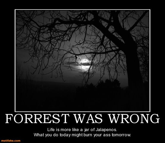 File:Forrest-was-wrong-forrest-gump-life-like-jalapenos-demotivational-posters-1297283313.jpg