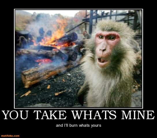 File:You-take-whats-mine-monkey-wants-spring-back-demotivational-posters-1319813061.jpg