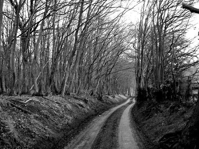 Datei:Winterroad-3850.jpg