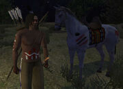 Apache and his Horse