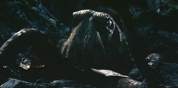image giant octopus 001jpg movie database wiki