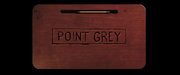 Point Grey Pictures