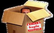 Box ministry