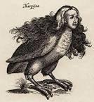 Harpy slut 2