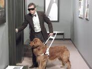 Mr. Dog01