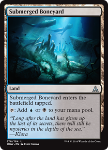 File:Submerged Boneyard OGW.png