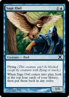 Sage Owl 10E