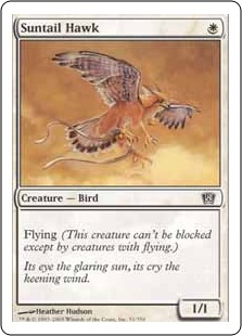 File:Suntail Hawk 8ED.jpg