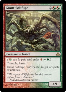 File:Giant Solifuge GPT.jpg