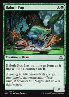 Baloth Pup OGW
