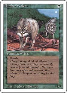 Timber Wolves 3E