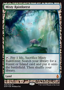 Misty Rainforest EXP