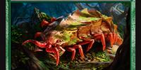 Loam Larva