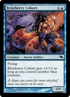 Briarberry Cohort SHM