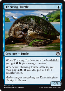 Thriving Turtle KLD