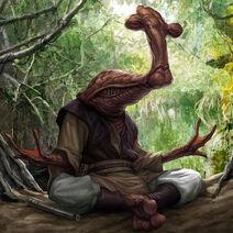Ithorian meditatin'