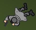 Pinned Fuhrer