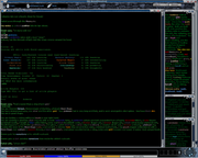 DragonRealms screenshot