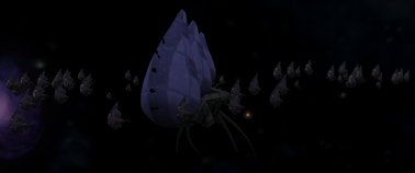 Cephalid ship