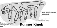 Runner Kinek