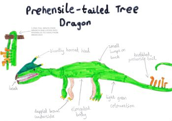 Prehensile tailed tree dragon