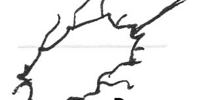 Desev Rhombite