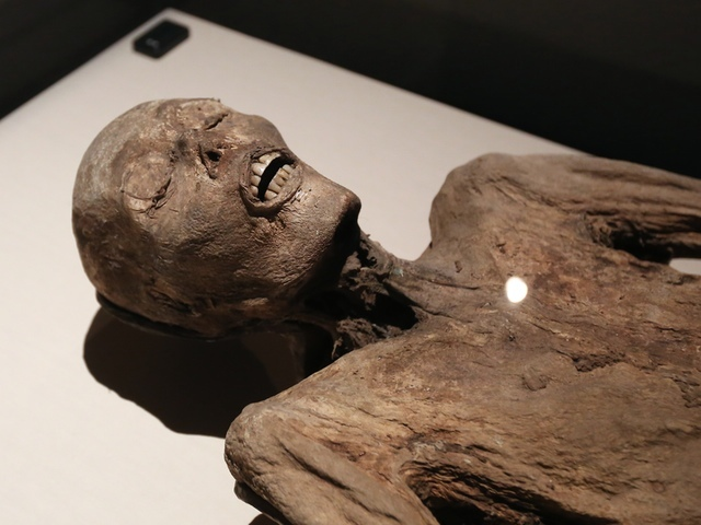 File:WCPO MummiesExhibit 7 1416509312628 9706750 ver1.0 640 480.jpeg