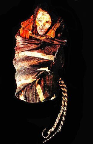 File:Arequipa Juanita Inca Ice Maiden 11.jpg