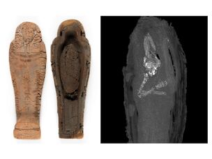 Ps mummymix 1-large trans 1463051348