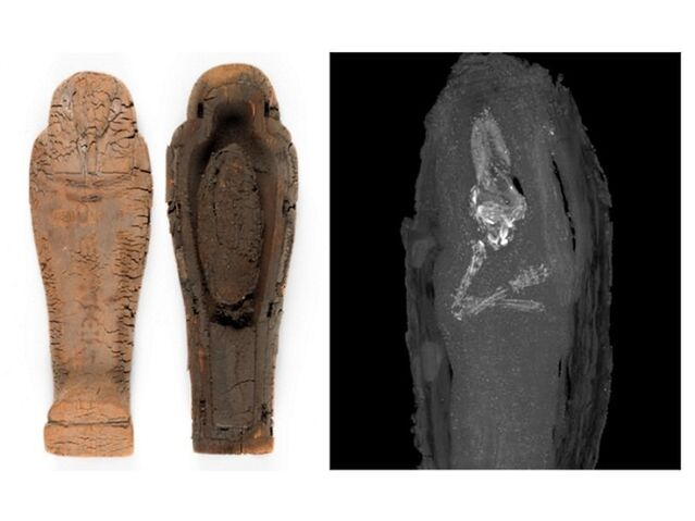 File:Ps mummymix 1-large trans 1463051348.jpg
